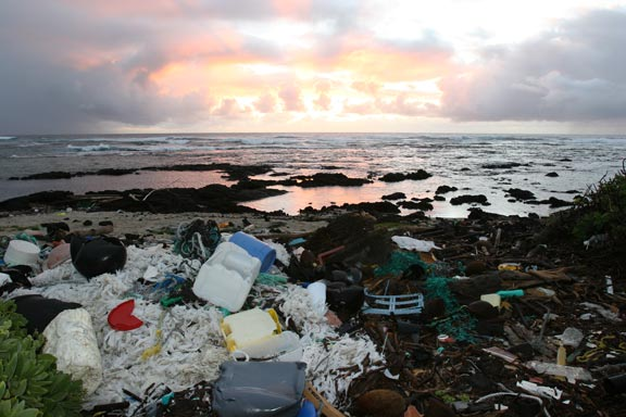 eastern garbage patch report